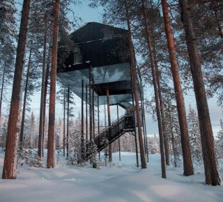the-7th-room-treehouse