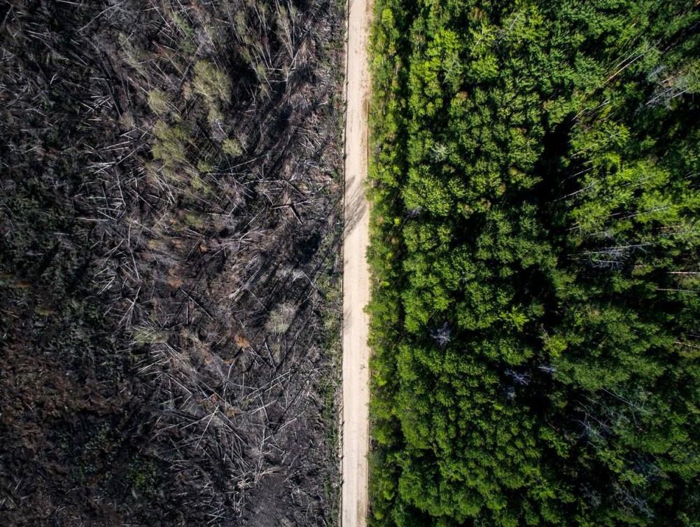 De weg die het vuur stopte