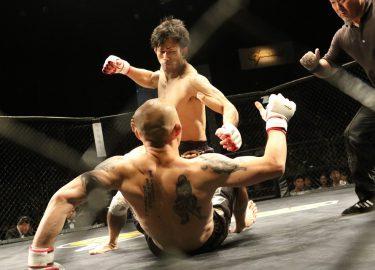 FHM-MMA