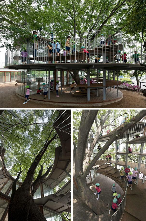 Deze Japanse kinderopvang is rondom een boom gebouwd