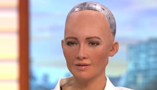 FHM-Robot