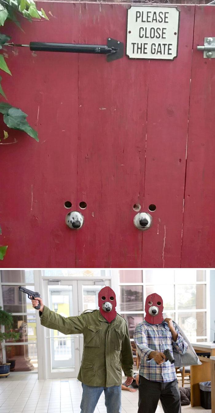 Hondvriendelijke poort - by GallowBoob