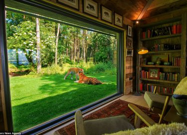 FHM-Tiger Lodge Kent