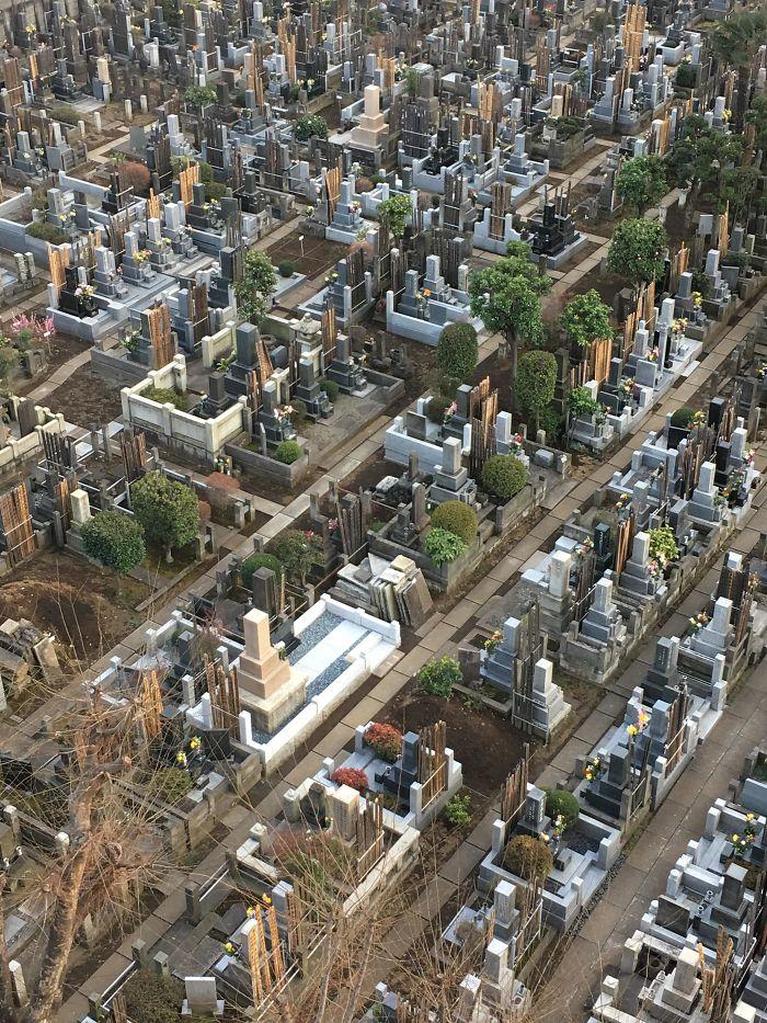 Begraafplaats lijkt op stad.