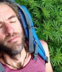 FHM-Marihuana