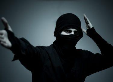 FHM-Ninja