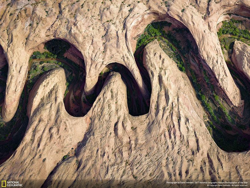 Foto: National Geographic , David Swindler