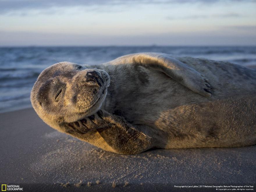 Foto: National Geographic , Lars Lykke