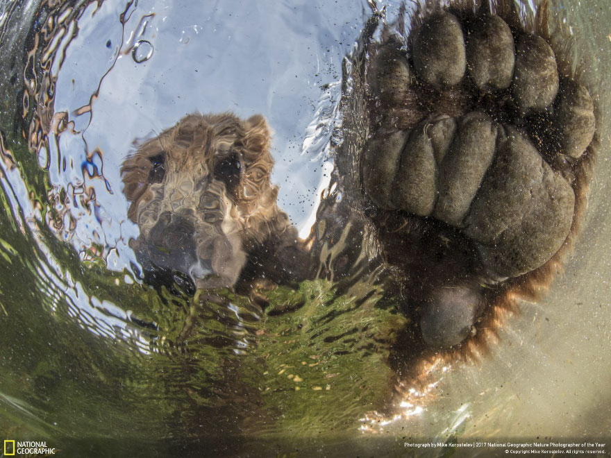 Foto: National Geographic , Mike Korostelev