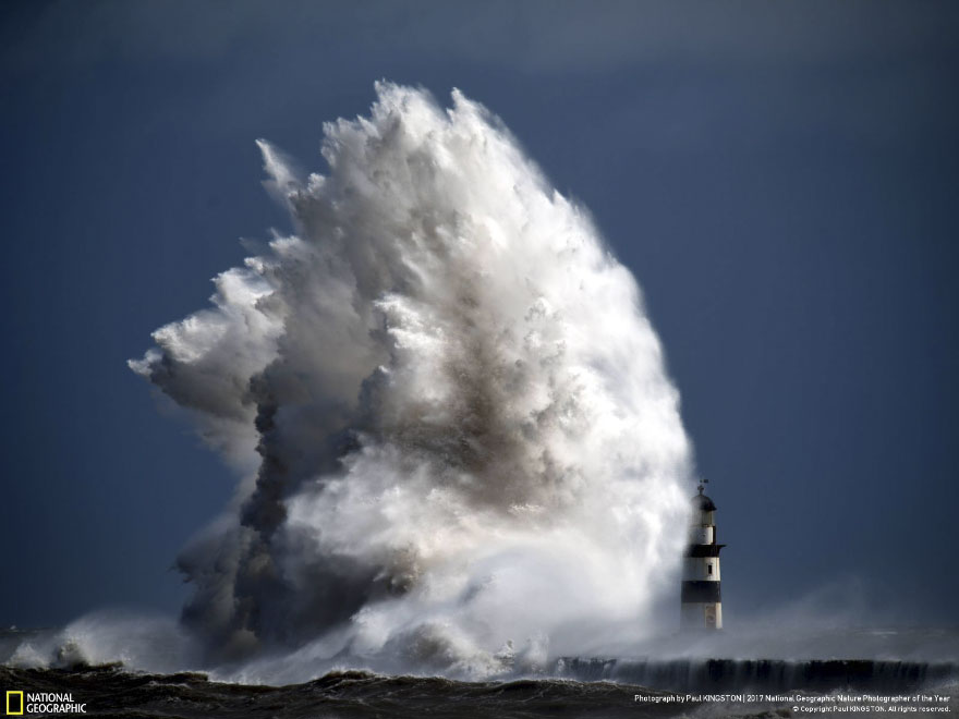 Foto: National Geographic , Paul Kingston