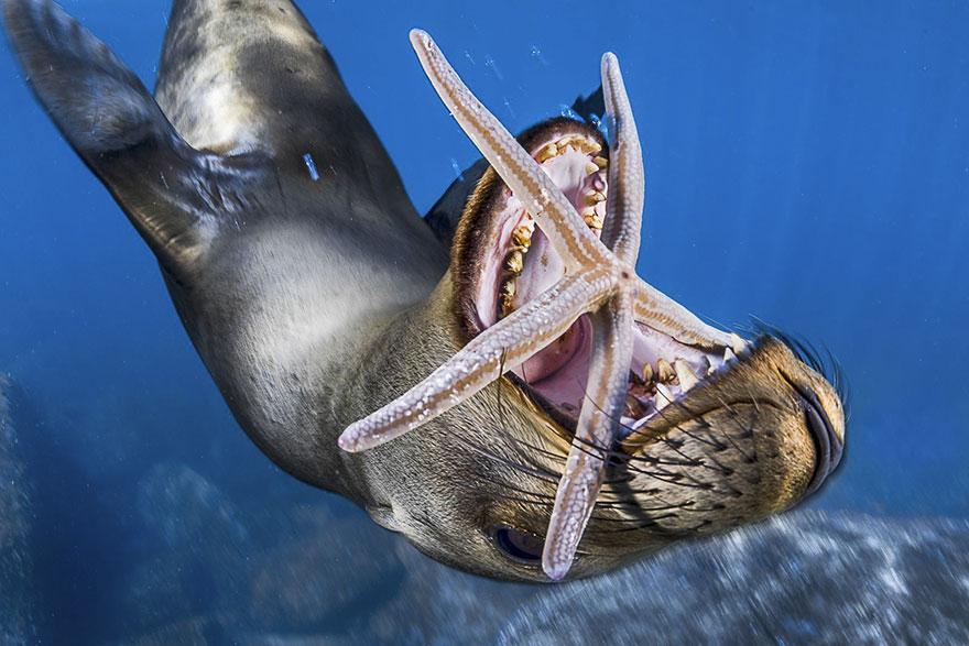 Foto: National Geographic , Pedro Carrillo
