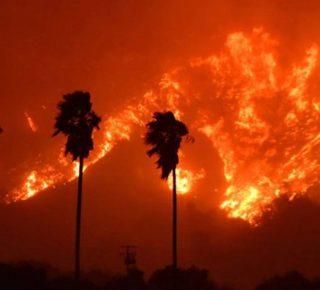 Los Angeles bosbrand