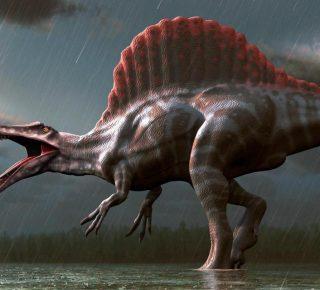 Jurassic Park inspirer dinosaurussen
