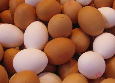 Eieren anus GHB