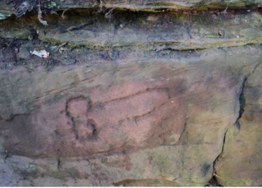 Penis Archeologen