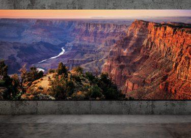 292-inch TV